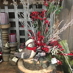 """Holiday 2018 • <a style=""""font-size:0.8em;"""" href=""""http://www.flickr.com/photos/39372067@N08/44163692010/"""" target=""""_blank"""">View on Flickr</a>"""