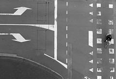 The Right Way? (TablinumCarlson) Tags: europa europe niederlande nederland eindhoven netherlands north brabant shop architektur architecture leica dlux 6 benelux street photography rad biker radfahrer radler fahrstreifen strase cyclist bicycle lane markers lanemarkers blackwhite black white