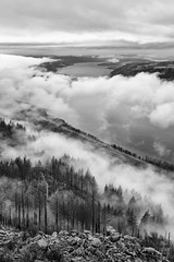 Angel's Rest (Joshua Johnston Photography) Tags: columbiarivergorge angelsrest sonya7iii sel2470z variotessartfe2470mmf4zaoss blackandwhite bnw oregon pacificnorthwest pnw landscapephotography trees clouds forest river