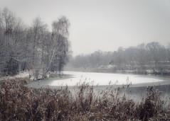 the beginning of winter (KRR_3) Tags: sony a6000 nex selp18105g winter snow lake pond ice poznan poznań antoninek