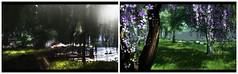 Petit Lac Des Cygnes (Alexa Maravilla/Spunknbrains) Tags: petitlacdescygnes estate frenchcountryside virtualliving landscape photography blog blogger decorate home nature animals outdoors secondlife sl virtual landscapes