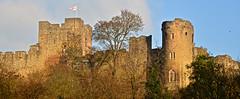 LUDLOW CASTLE (chris .p) Tags: ludlow castle shropshire nikon d610 uk autumn 2018 history view capture november england flag tower