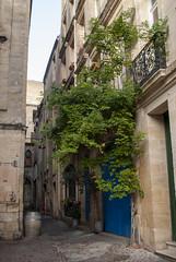 Bordeaux, France (Tiphaine Rolland) Tags: bordeaux france gironde autumn automne 2018 nikond3000 nikon d3000 street rue porte gate door blue bleu