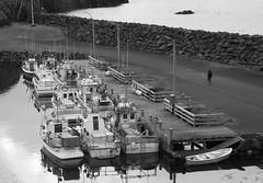 Harbour Stroll (peterkelly) Tags: digital bw canon 6d gadventures bestoficeland iceland europe bakkagerði borgarfjörðureystri harbor harbour boats boat water alone solitude dock ramp wooden man walking