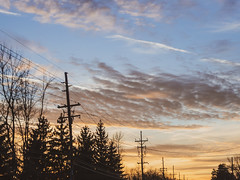 lights will guide you back home (jojoannabanana) Tags: 3652018 clouds color dramatic dreamy dusk goldenhour light panasoniclumix powerlines shadows silhouette sky sunlight sunset trees
