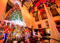 1W2A0114 (clement.kinglam.lo) Tags: casa loma christmas toronto canada castle