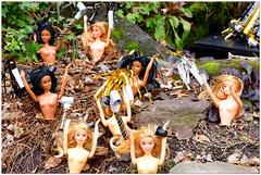 Barbie says YAY 2019! (Rex Block) Tags: barbiesaysyay2019 nikon d750 dslr 85mm f18g barbie newyear ken doll diorama qstreet dc washington 1454qstreet