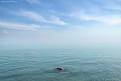 Vitamin Sea (flovision.net) Tags: wwwflovisionnet d850 nikon thailand southeastasia asia trat kohchang travel sea ocean seascape blue turquoise tranquil elephantisland