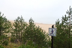 White Dune (claudipr0) Tags: lettland baltikum latvia strand ostsee sea beach balticsea kiefern birken birch pinetrees saulkrasti