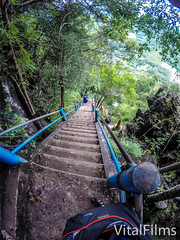 Tiger Stairs (Vital Films1) Tags: limestone buddha stunning wonders natural krabitown spiritual thankwatsua sua wat tham view live life death goddess chinesefertilitygoddessstatue tuktuk respect tigercavetemple thailand krabi tourist selfi mountain beautiful scenic views sky temple tiger gopro goprohero4 hero4 1080 hd