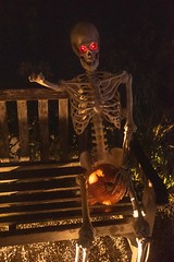 20181029_0052_1 (Bruce McPherson) Tags: brucemcphersonphotography glowinthegarden halloween colourfullights colouredlights spooky fun creative creativelightinglowlightphotography nightphotography vandusangardens vancouverparksboard vancouver bc canada