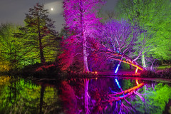 Notti misteriose / Mysterious nights (Syon Park, London, United Kingdom)(Buon Natale!!!/Merry Christmas!!!) (AndreaPucci) Tags: london uk syonpark enchantedwoodland lake night reflections andreapucci