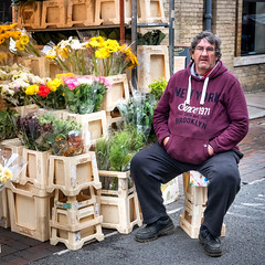 Market Man. (James-Burke) Tags: burystedmunds man candid uk street cambridgeshire streetphotography stallholder people flowerseller