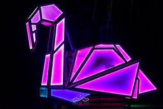 Flamingo Glow - Nicholas James