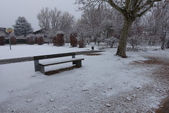 Parc Vignières-Pommaries @ Snow @ Annecy-le-Vieux (*_*) Tags: winter hiver afternoon january 2019 snow neige cold europe france hautesavoie 74 annecy annecylevieux savoie parcvignierespommaries park white
