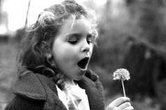 DANDELION (bonetacarbo) Tags: maria dandelion blow nature blackandwhite girl autumn