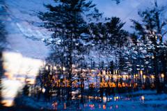 323/365@50 (Ruff Edge Design) Tags: lensbaby sweet35 sunset trees abstract multipleexposure snow winter maine intentionalcameramovement icm