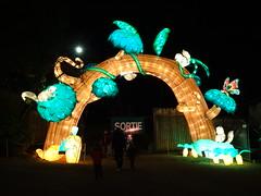 31 Arc de joie (christine.petitjean) Tags: écureuil escargot papillon snail butterfly squirrel gaillac festivaldeslanternes2018 chine tang