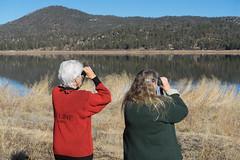 First Eagle Count of the Season (San Bernardino Nat'l Forest) Tags: volunteers baldeaglecount eaglecount bigbear citizenscientist