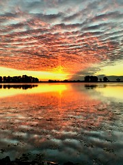 December 3, 2018 Sunrise from the bank of the Sacramento River across the street from my place. I'll never move! (Rvbridgeman) Tags: rvbridgeman stopthetunnels seret delta california riovista sacramentoriver riverlife sunrise river