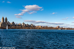 Central Park Reservoir - Winter 2018-19-5.jpg (jbernstein899) Tags: natural manhattan nature water leaf city brown paseo pathway defoliation tree fallenleaves newyorkcity architecture america path winter season pedestrian buildings centralpark brownleaves perspective us botany northamerica clearday reservoir highrise elm recreation american park empty blueskies bigapple branch