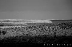ohne Worte (baltickiter) Tags: ostsee strand salzhaff sturm surfen wellen wasser kitesurfen nikon