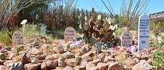 Boot Hill, Tombstone (M McBey) Tags: arizona usa tombstone boothill cemetery grave marker famous infamous