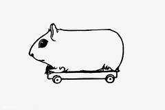 Vintage guinea pig illustration (Free Public Domain Illustrations by rawpixel) Tags: animal antique art arts artwork black blackandwhite board cc0 creativecommons0 decor decorative dormouse drawing element engraved engraving fineart graphic graphite guineapig historic historical history illustration ink isolatedonwhite mouse name painting pencil publicdomain rat retro ride riding sketch sketching toy victorian vintage whitebackground