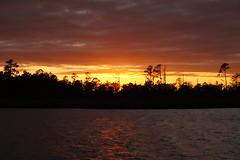 ...beyond the forest (Jim Atkins Sr) Tags: sunset spectacularsunsetsandsunrises cloudsstormssunsetssunrises northcarolina northwestcreek fairfieldharbour sony sonyphotographing sonya58 cloudscape