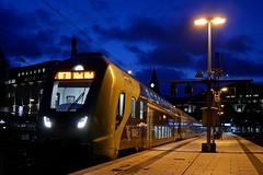 P1760074 (Lumixfan68) Tags: eisenbahn züge et bombardier twindexx vario baureihe 445 deutsche bahn db regio nahsh doppelstockzüge