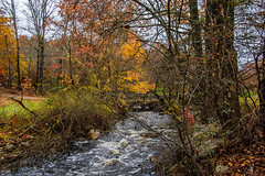 Westbrook Park_4597 (smack53) Tags: smack53 foliage fall fallseason fallcolors autumn autumnseason autumncolors colorful westmilford newjersey nikon d100 nikond100