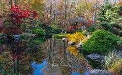 Gibbs Fall Landscape (4 Pete Seek) Tags: autumn autumncolors gibbsgardens gardens botanicalgardens ballground ballgroundgeorgia japanesegarden