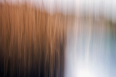 Reeds and water (mat352) Tags: reeds water d7200 movement icm river