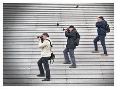 _DSC4666 (laurent287) Tags: photographers staircase paris la défense france three mans man photo shooting