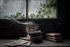 Abandoned Chapel Books (ducatidave60) Tags: fuji fujifilm fujinonxf23mmf14 fujifilmxe3 abandoned decay dereliction urbandecay urbex urban