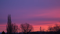 Aurore (sosivov) Tags: sweden sunrise sky red lilac silhouette trees