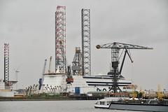 Pride of Hull (Hugo Sluimer) Tags: nlrtm onzehaven portofrotterdam port haven nederland zuidholland holland nikon nikond500 d500