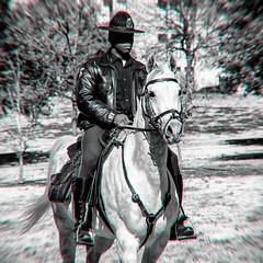 Dallas Cowboys (Thomas Hawk) Tags: america dallas dallaspd texas usa unitedstates unitedstatesofamerica bw cop horse police policehorse fav10 fav25 fav50