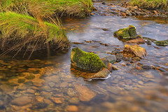Cadover Long Exposure (Jonathan Goddard1) Tags: sony a7m3 a7iii sonyalpha dartmoor cadoverbridge river longexposure nd filter neutraldensity