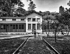 How I wish our paths will cross someday... (Luana L Martinez) Tags: parque parquevicentinaaranha arquitetura restauracaoarquitetonica saojosedoscampos patrimoniohistorico bwphotography blackandwhite aroundtheworld park peoplearoundtheworld friendship friends