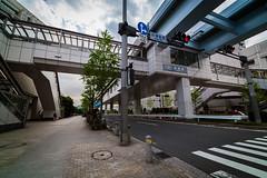 Odaiba Street (seph_88) Tags: odaiba odaibaisland japan streetphotography