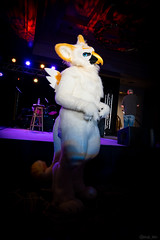 DSC08954 (Kory / Leo Nardo) Tags: pacanthro pawcon paw con pac anthro convention fur furry fursuit suiting mascot sona fursona san jose doubletree hotel california dance party deck animals costuming pupleo 2018