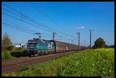 Lineas 186 293, Gildehaus 14-10-2017 (Henk Zwoferink) Tags: badbentheim niedersachsen duitsland de lineas henk zwoferink gildehaus bombardier traxx ms2e 186 293 lna b nmbs bcargo logistics