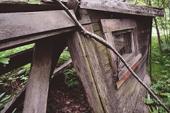 Pullen House [exterior of a abandoned chicken coop] (i threw a guitar at him.) Tags: alaska skagway 2017 pullen house home hotel ruin ruins remains history local historict location visit attraction explore exploring travel unique secret hidden abandoned rot wood woods forrest forest chicken coop old