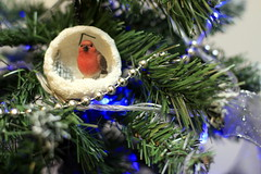 Robin Christmas Tree Decoration (49/52) (Stu.G) Tags: project52 project 52 project522018 522018 8dec18 8thdecember2018 8th december 2018 december2018 8thdecember 81218 8122018 canoneos40d canon eos 40d canonef50mmf14usm ef 50mm f14 usm ef50mm ef50mm14 canon50mmf14 england uk unitedkingdom united kingdom britain greatbritain d europe eosdeurope robin christmas christmastree christmasdecoration blue bluelight