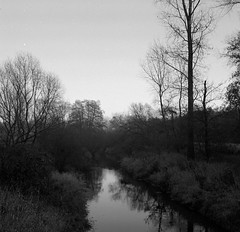 Cold river (Rosenthal Photography) Tags: ff120 epsonv800 20181202 6x6 asa400 schwarzweiss ilfordhp5 weltaweltax mittelformat analog ilfordrapidfixer oste cold river landscape winter december mood blackandwhite trees welta weltax zeiss tessar czj 75mm f35 ilford hp5 hp5plus lc29 129 epson v800