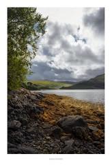 Loch Sunart (Loch Shuaineart)