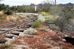 Goldfield65 (ONE/MILLION) Tags: vacation travel tours visit old history mine mining town gold goldfield arizona church railroad cross rust rusty saguaro cactus williestark onemillion horse blue sky outdoors mountains superstition lost dutchman bell flowers cowboys