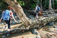 Hiking at Corcovado National Park (adventurousness) Tags: drake bay costa rica travel traverling parque nacional corcovado bahia photo photography traveler bahiadrake costarica drakebay parquenacionalcorcovado travelphoto travelphotography