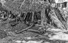 Malagasy village / Малагасийская деревня (dmilokt) Tags: природа nature пейзаж landscape деревня village dmilokt чб bw черный белый black white